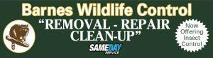 barnes-wildlife-control---site-image
