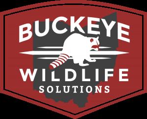 buckeye wildlife solutions badge