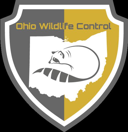 Ohio Skunk Removal Digital Badge