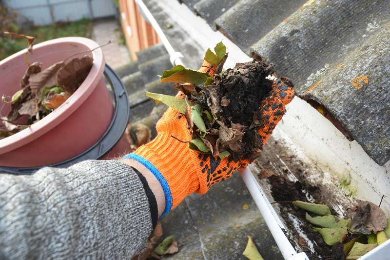 Ohio's premier gutter cleaning service keeps your gutters debris free